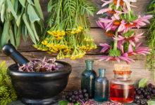 دنیای شگفت انگيزش گیاهان دارویی