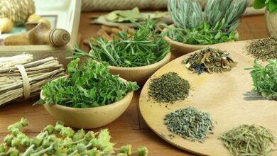 خواص و ويژگي هاي عصاره های گیاهان داروئي