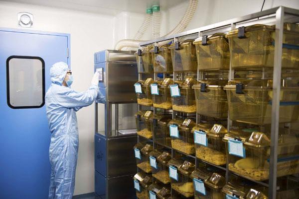 اتاق حیوانات آزمایشگاهی هیستوژنوتک