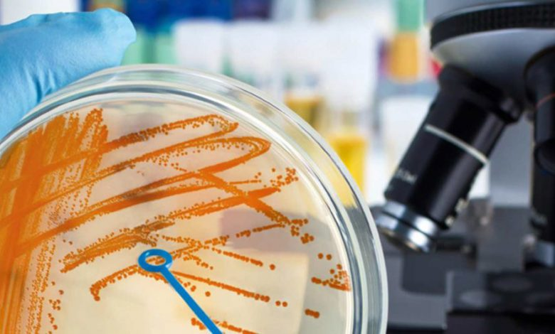 تکنیک های میکروبیولوژی