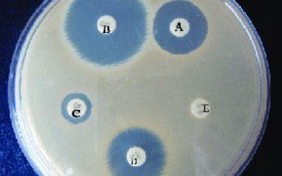 تست-حساسیت-آنتی-بیوتیکی-مقاوم-به-متی-سیلین(DDM)
