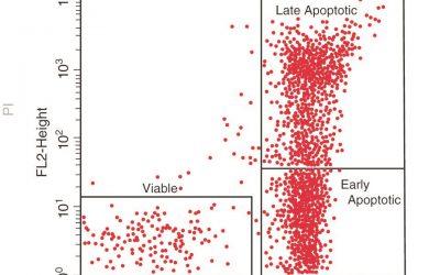 بررسی آپوپتوز با انکسین V - شرکت دانش بنیان بافت و ژن پاسارگاد